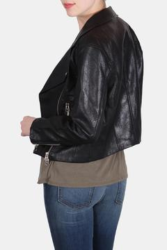 Signature 8 City Chic Moto Jacket - Alternate List Image