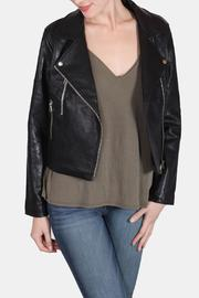 Signature 8 City Chic Moto Jacket - Product Mini Image