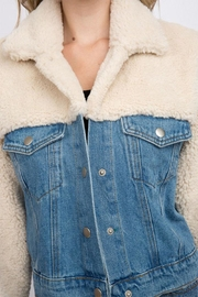 Signature 8 Denim Teddy Jacket - Back cropped