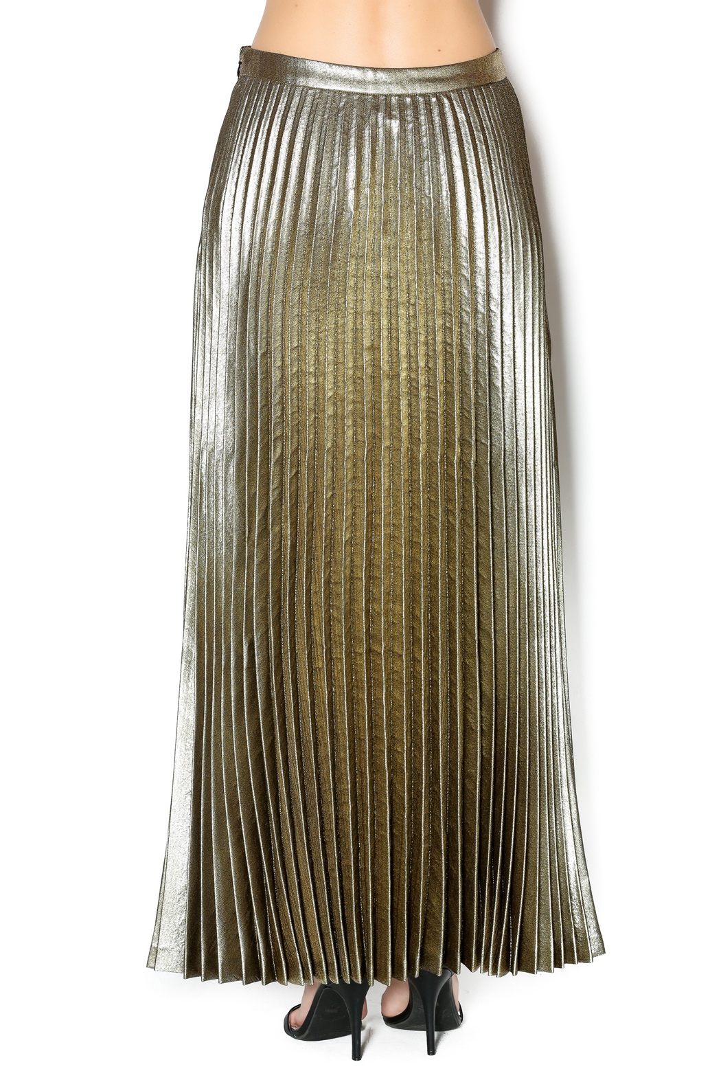 SILIVAN HEACH Gold Pleated Maxi Skirt from Germantown by On a Whim ...