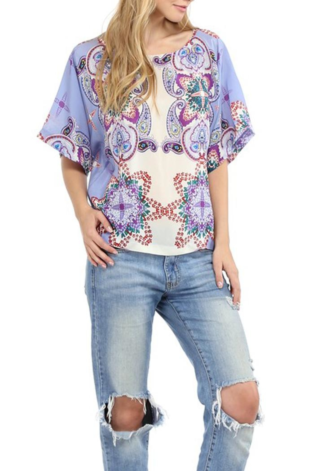 Glam Silk Boho Top - Front Cropped Image