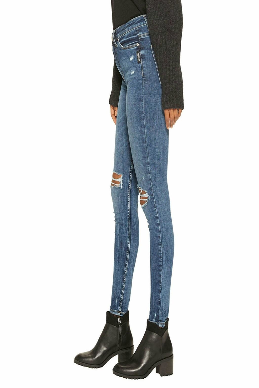 Silver Jeans Co. Robson High-Rise Skinny - Side Cropped Image