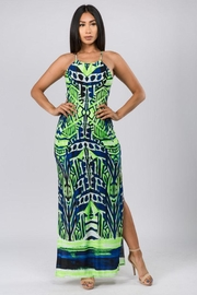 Silvergate Print Maxi Dress - Product Mini Image