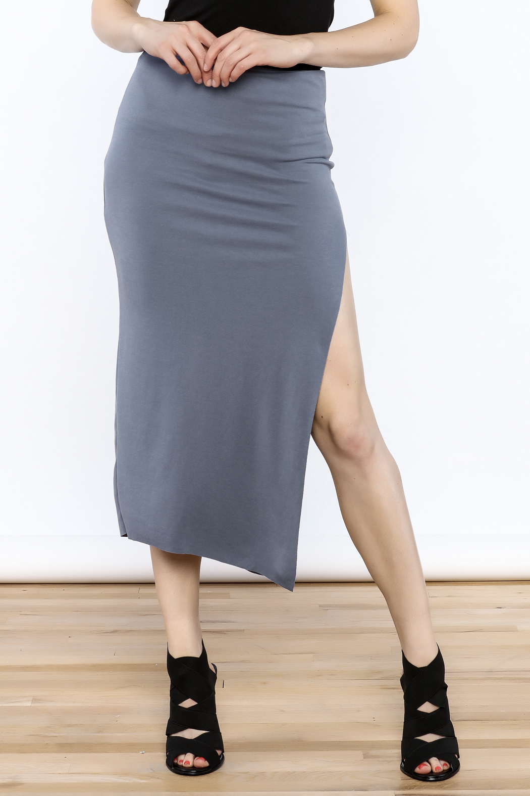simple the label Modern Bodycon Skirt - Front Cropped Image