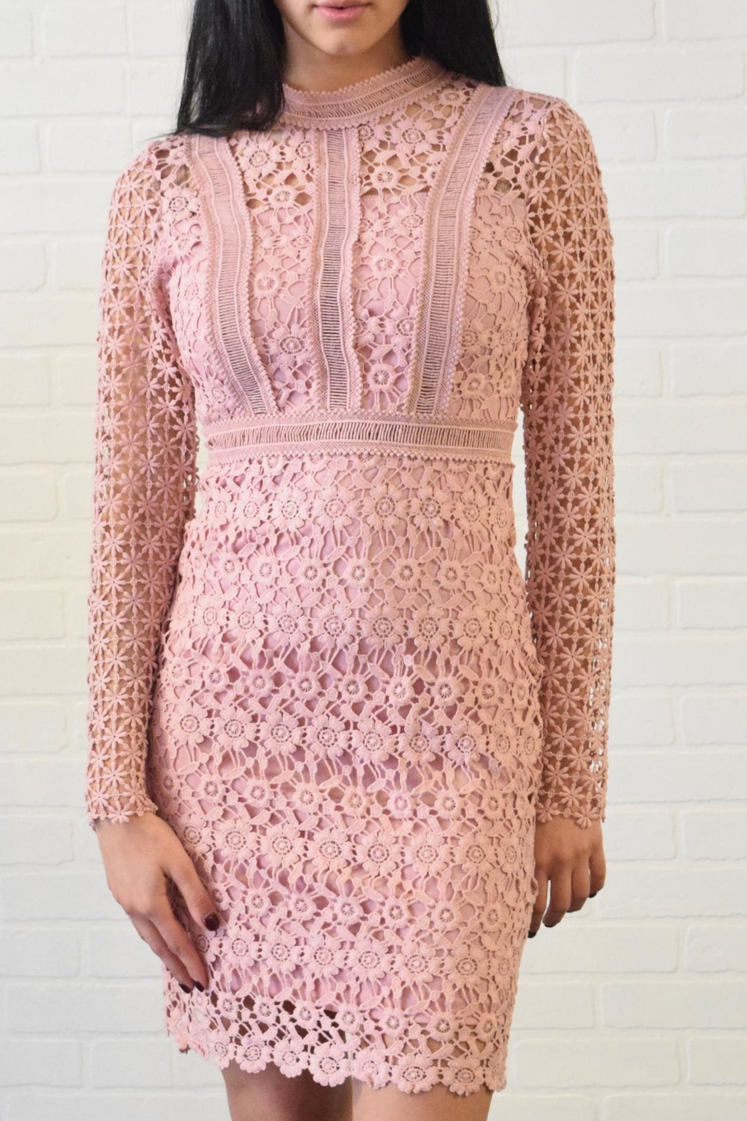 simple the label Lace Dress - Main Image