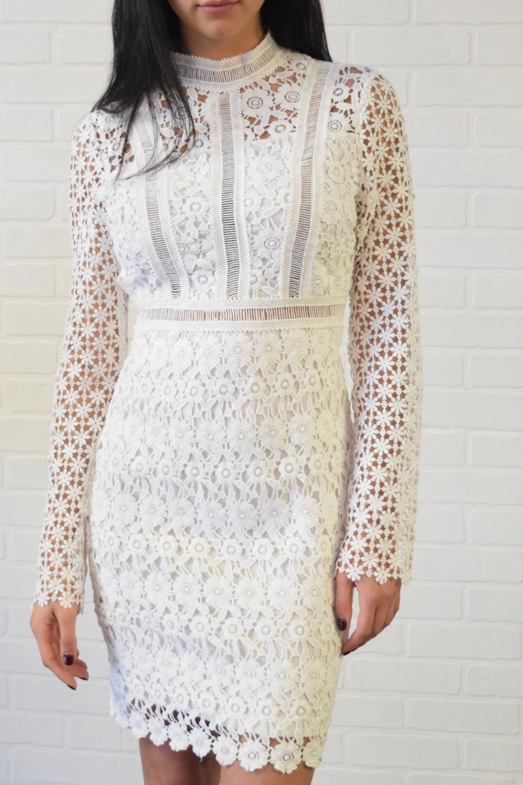 simple the label Lace Dress - Front Cropped Image