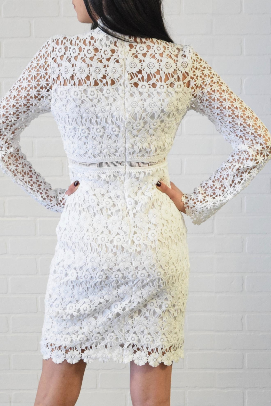 simple the label Lace Dress - Back Cropped Image