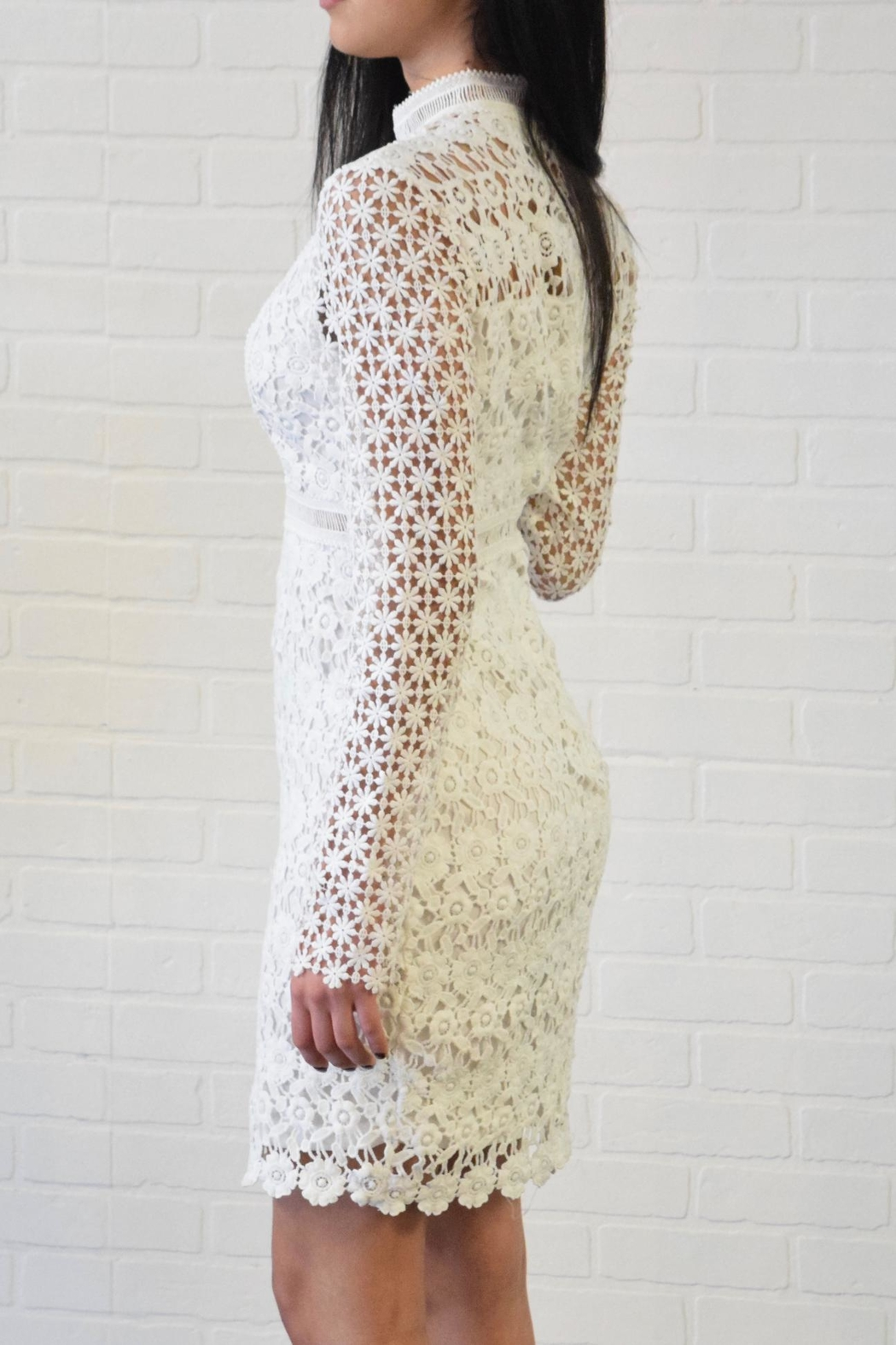 simple the label Lace Dress - Side Cropped Image