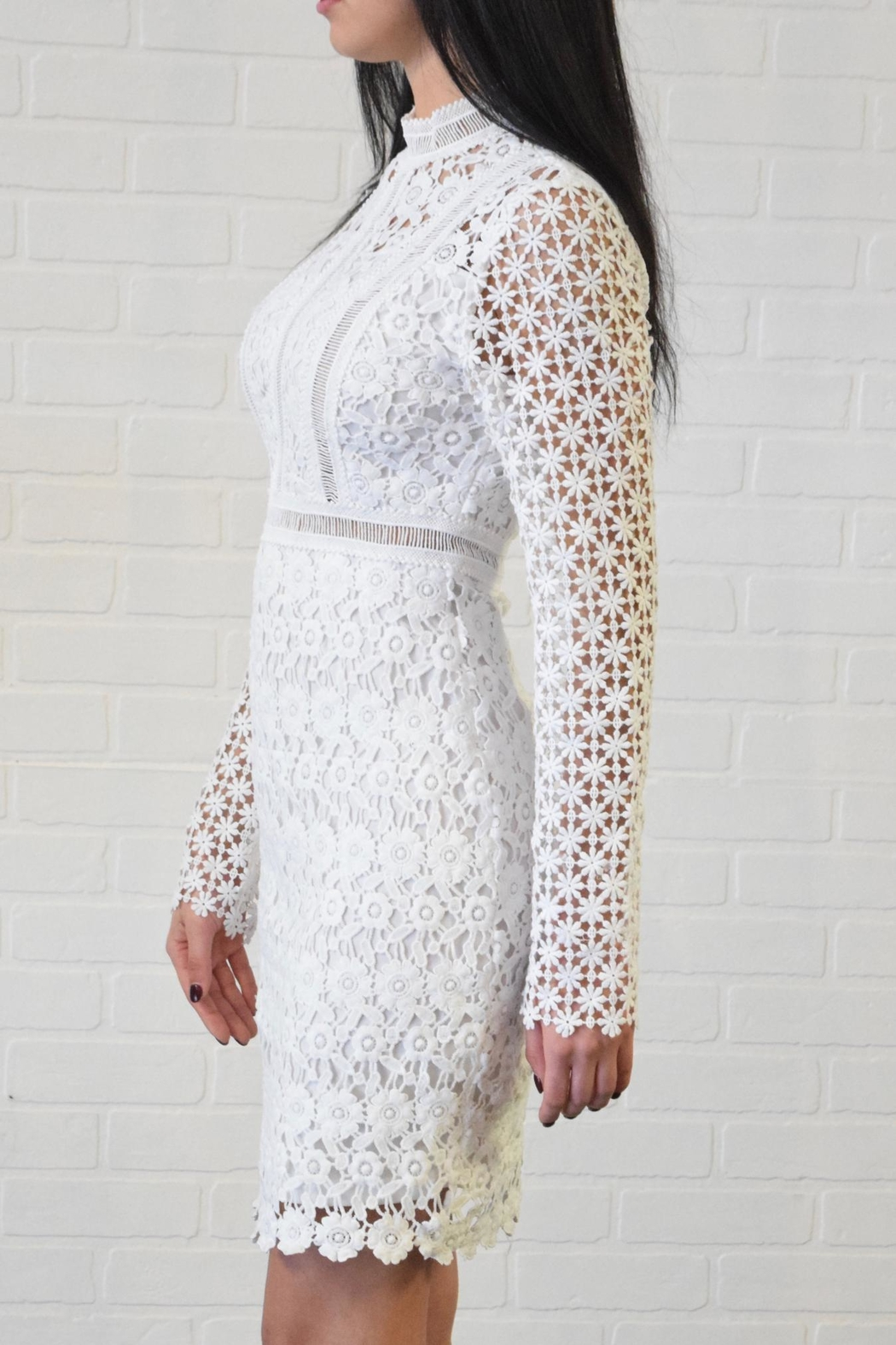 simple the label Lace Dress - Front Full Image