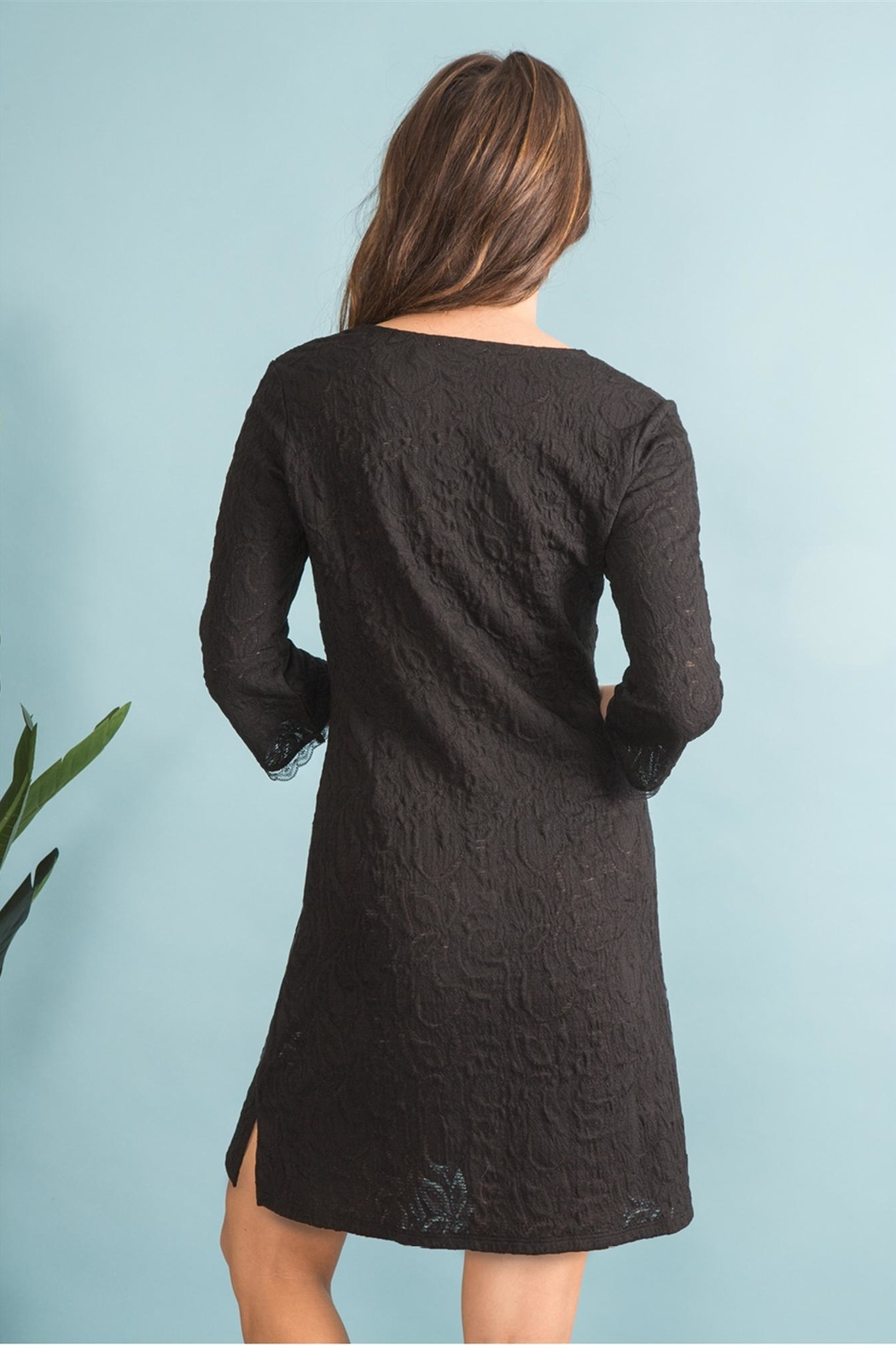 Simply Noelle Black Lace Dress - Back Cropped Image