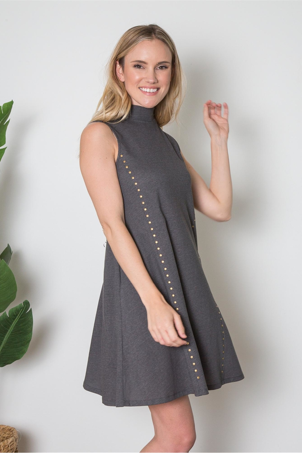 Simply Noelle Studded Dress - Front Cropped Image