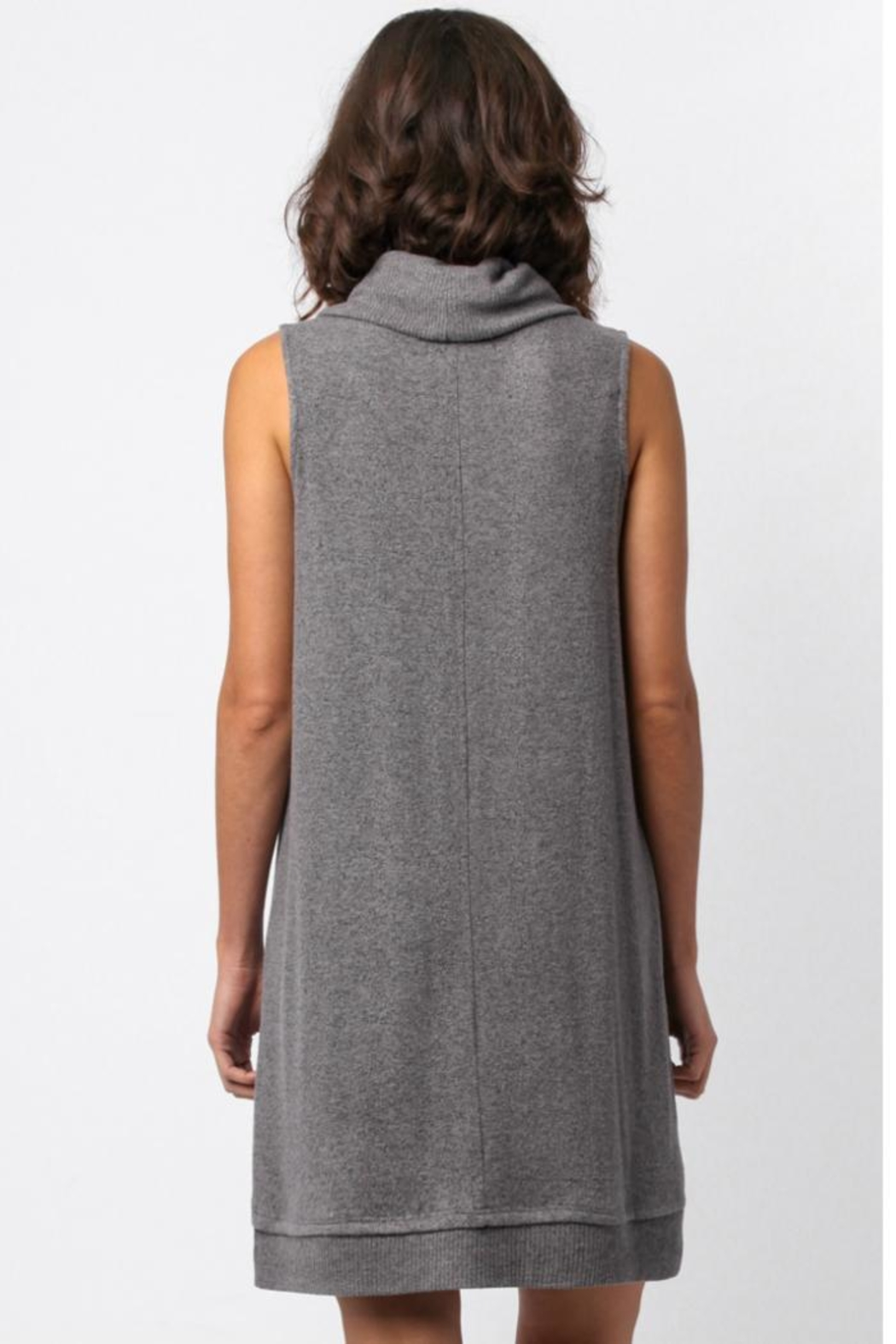 Sinuous Sleeveless Cowl Neck Dress - Back Cropped Image