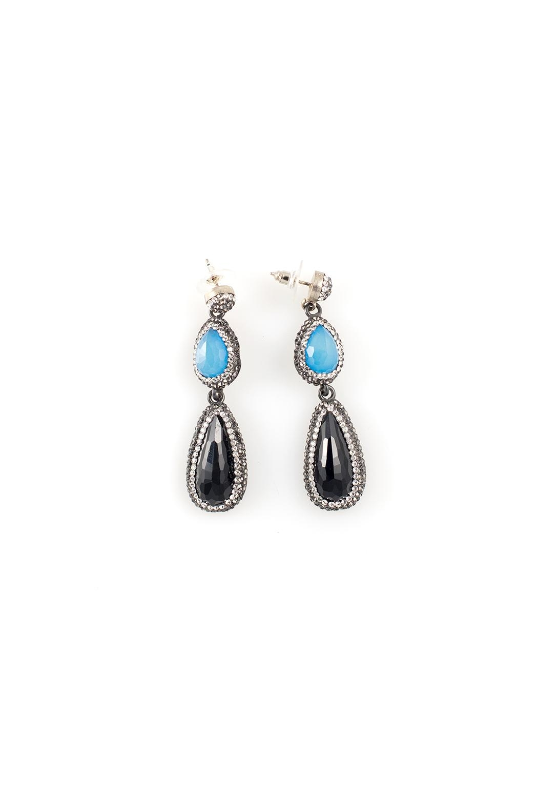 Blue Drop Earrings  Front Cropped Image