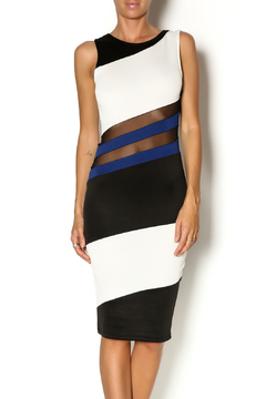 Shoptiques Product: Mesh cutout dress