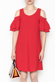 Skies Are Blue Red Hot Dress - Front full body