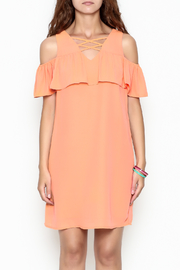Skies Are Blue Tangerine Dreams Dress - Front full body