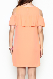 Skies Are Blue Tangerine Dreams Dress - Back cropped