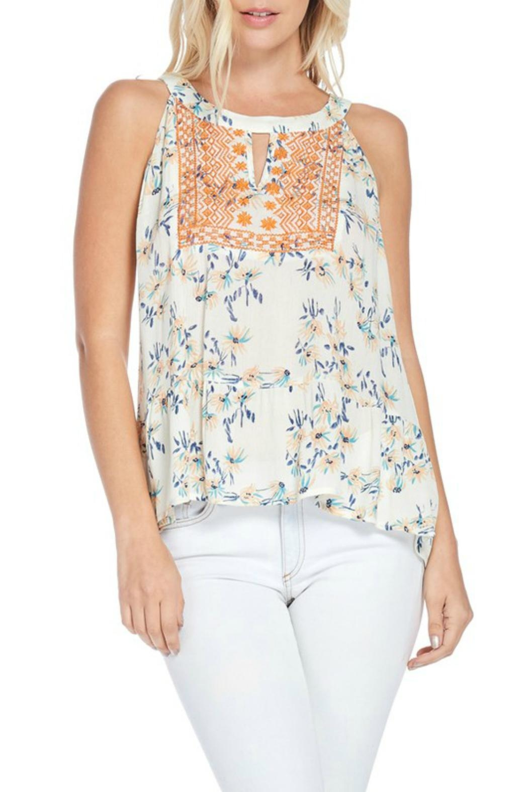 Skies Are Blue Embroidered Halter Top - Main Image