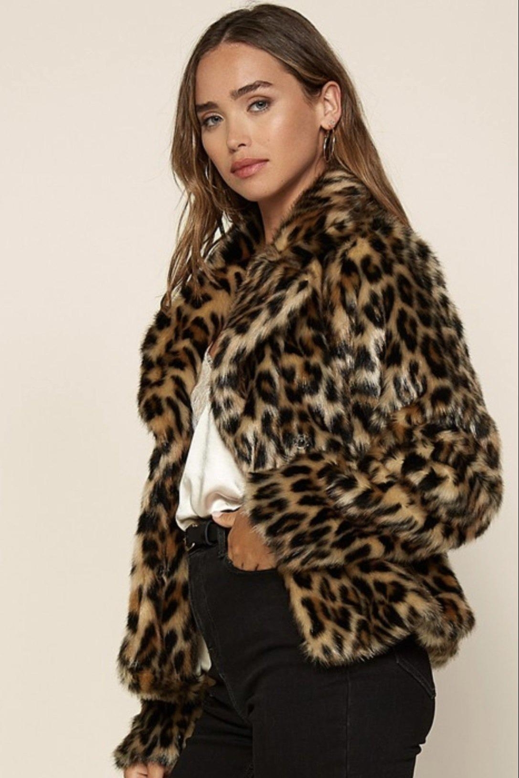 Skies Are Blue Faux Fur Leopard Jacket - Side Cropped Image