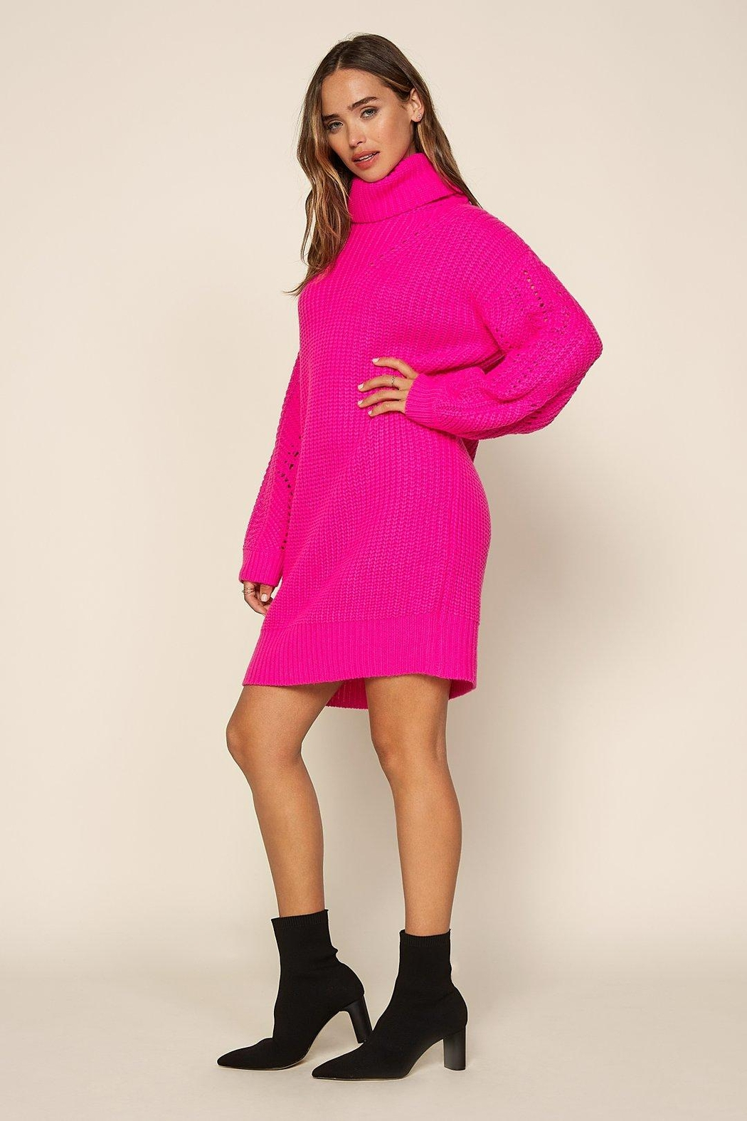 Skies Are Blue Hot Flamingo Sweater Dress - Back Cropped Image