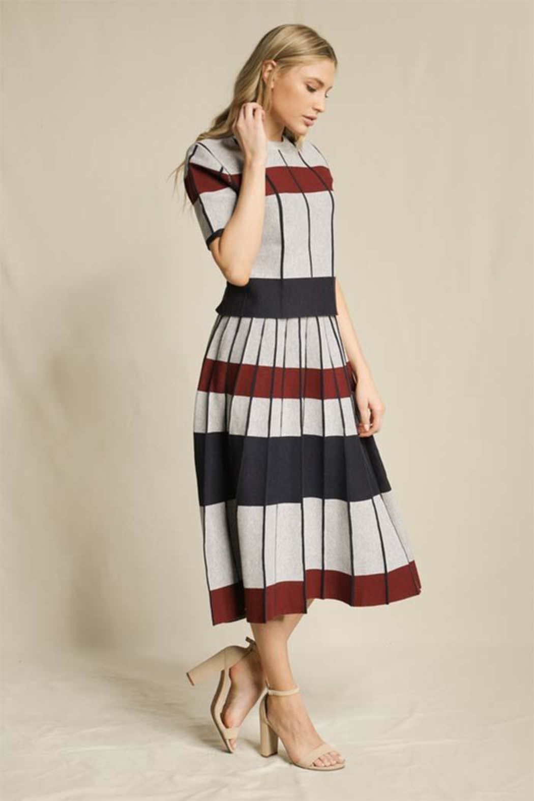 Skies Are Blue Striped Pleated Skirt - Front Full Image