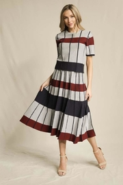 Skies Are Blue Striped Pleated Skirt - Front cropped