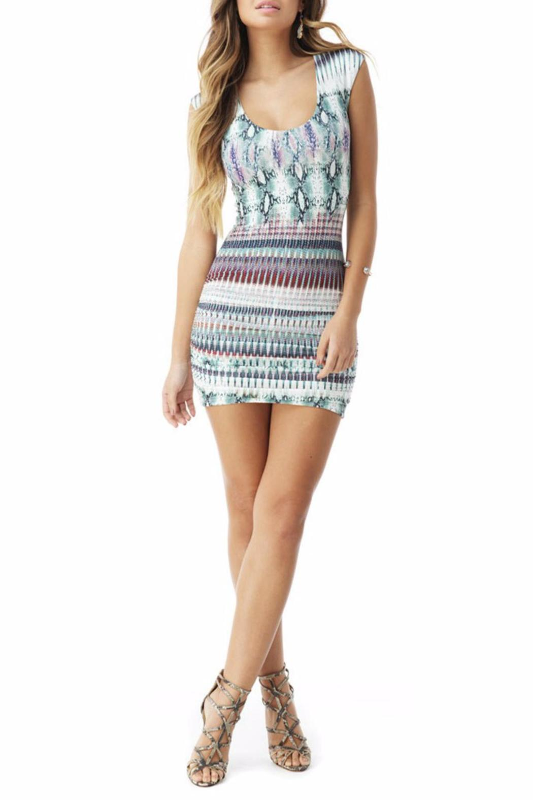 Sky Collection Hannibal Mini Dress - Front Cropped Image