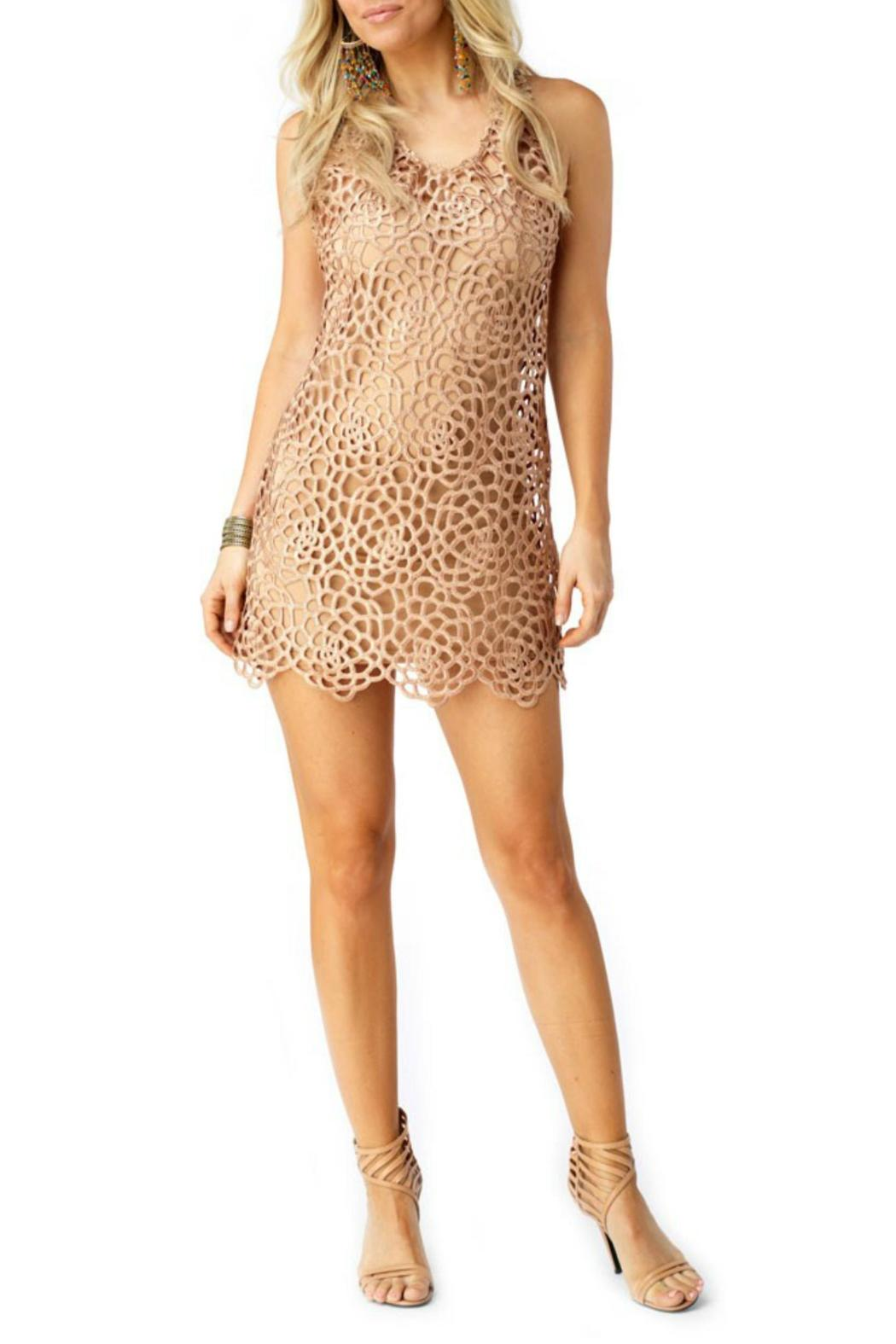 Sky Collection Ioannia Mini Dress - Side Cropped Image