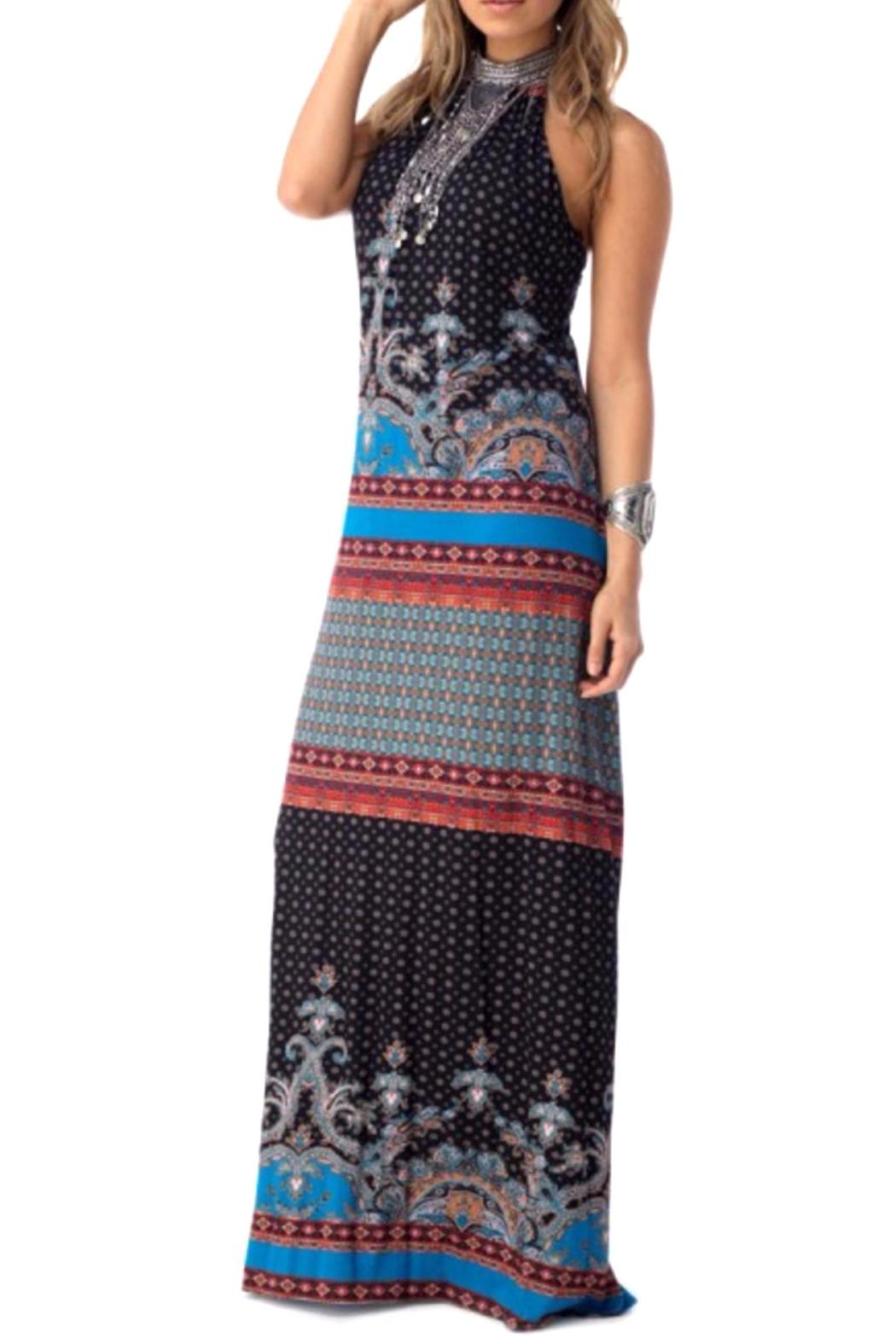 Sky Collection Paloma Maxi Dress - Front Full Image