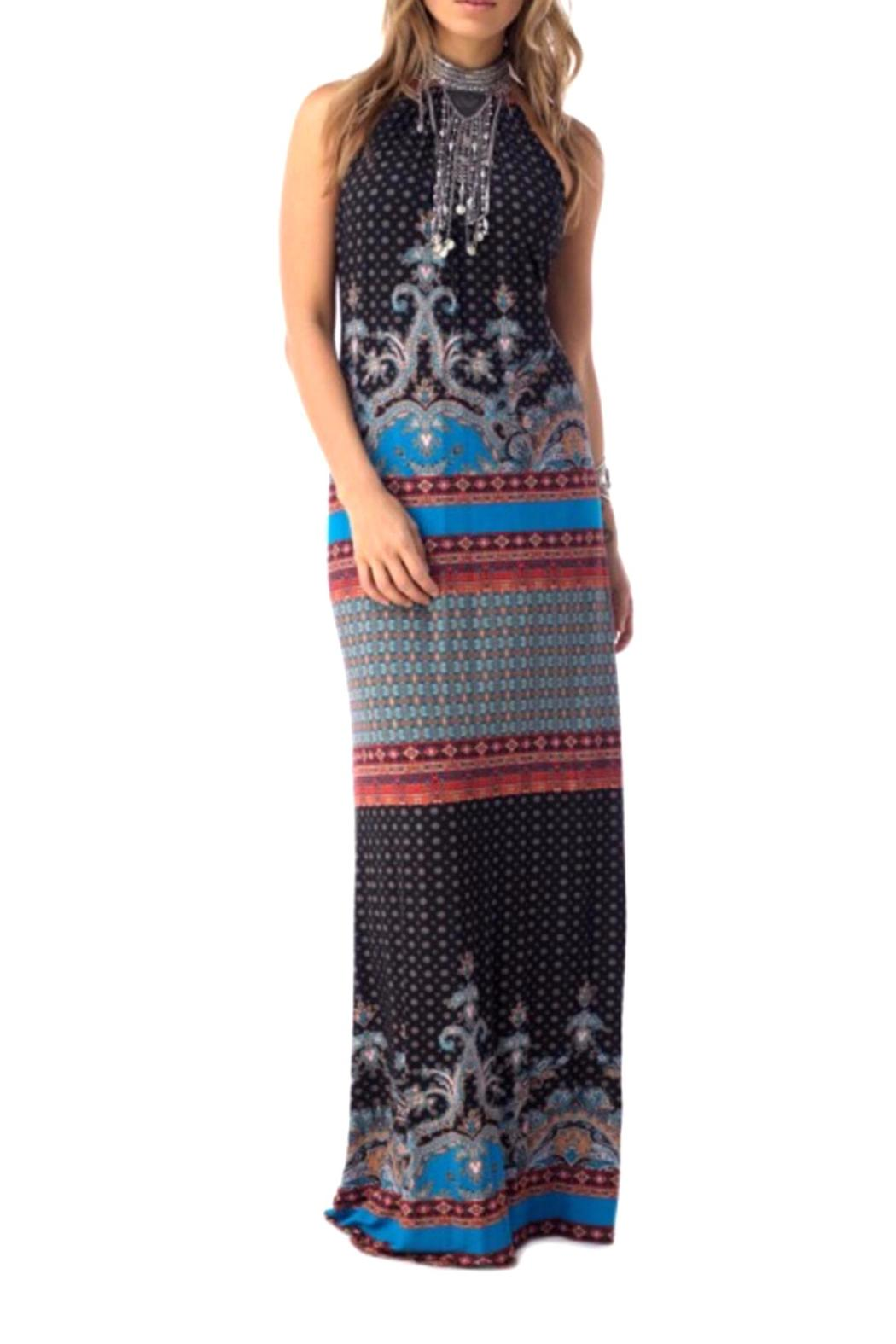 Sky Collection Paloma Maxi Dress - Main Image