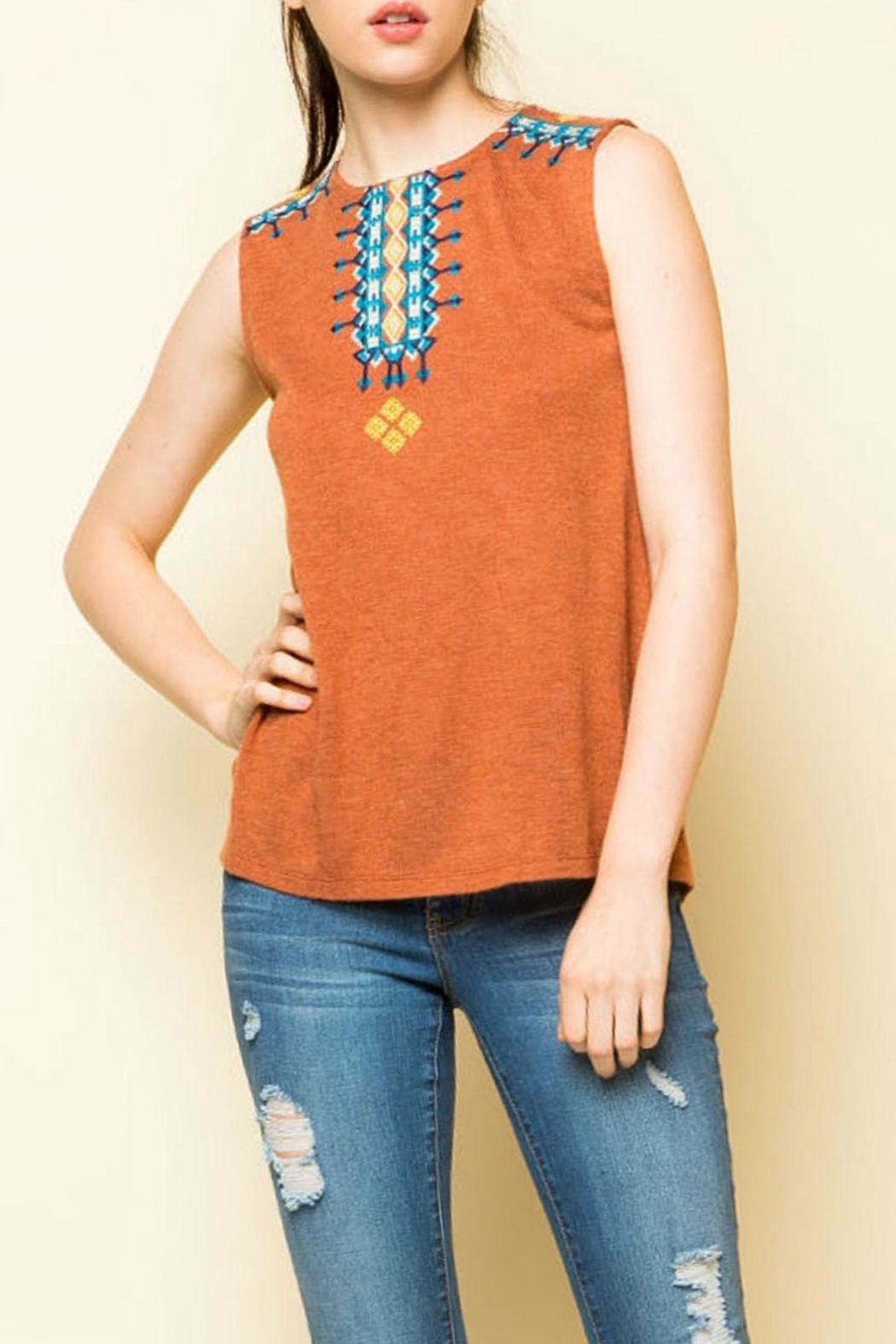 Thml Sleeveless Embroidered Knit - Main Image