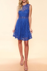 Available Sleeveless Lace Dress - Back cropped