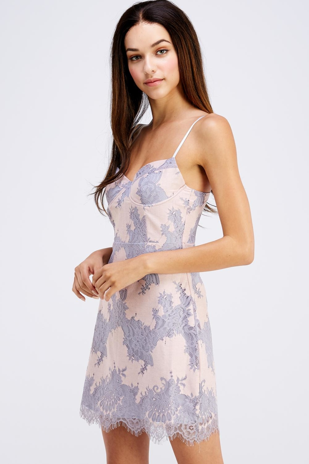 storia Sleeveless Lace Dress - Side Cropped Image