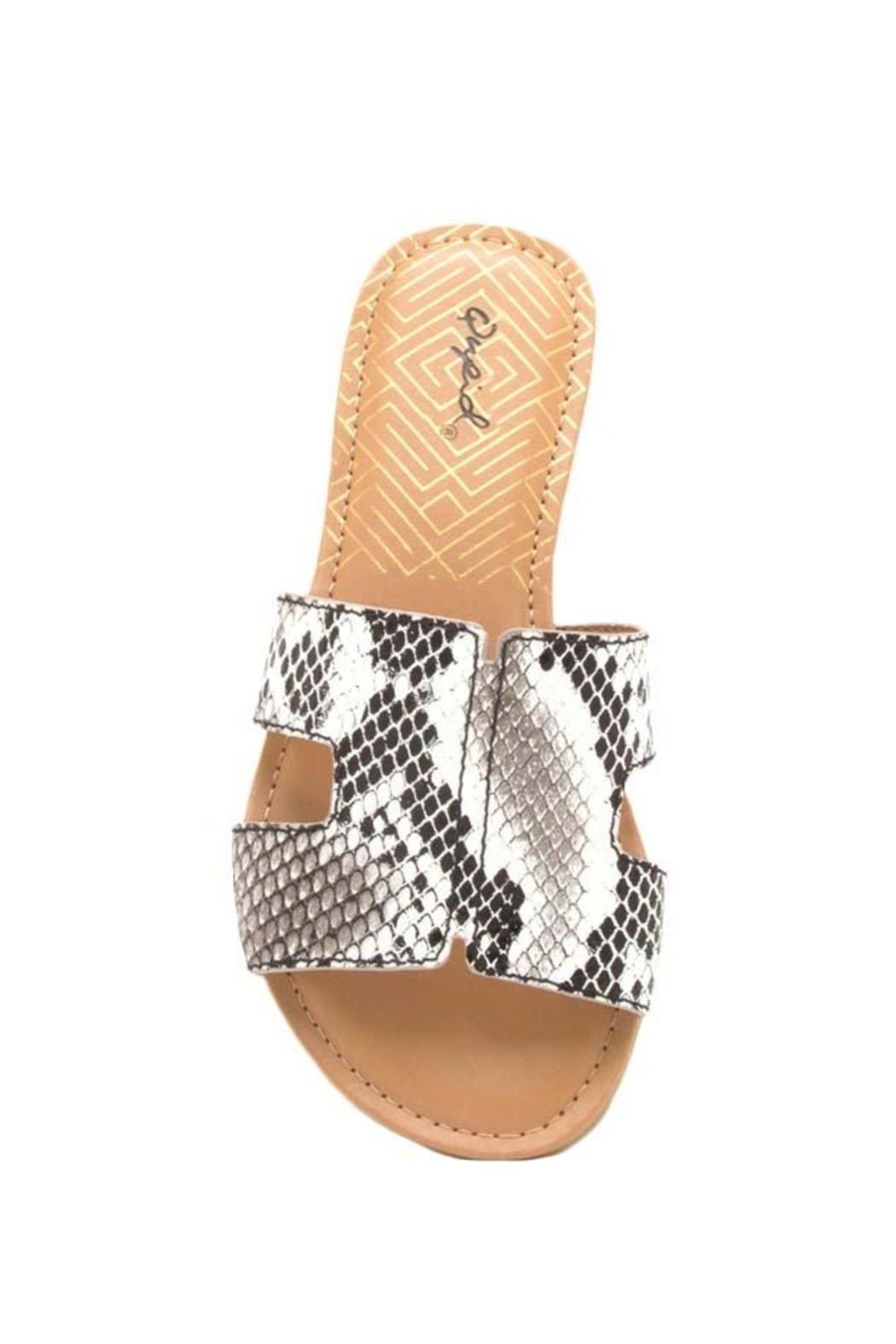 8e5d8a47d42 Qupid Slide In Sandals Snake from Orlando by Zingara Souls — Shoptiques