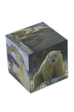 Shoptiques Product: Polarbear Picture Cube