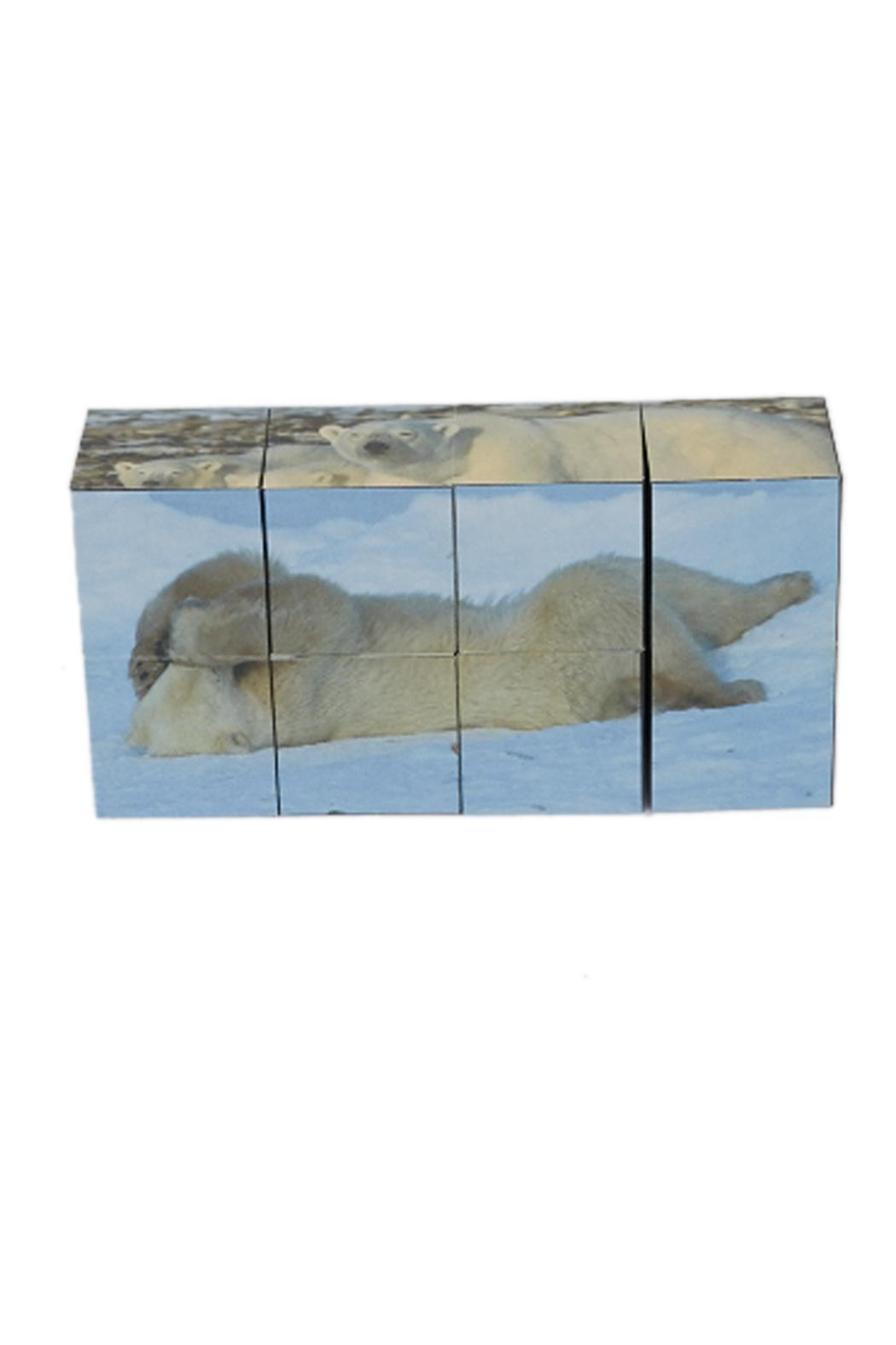 Smith Photography Polarbear Picture Cube - Front Full Image