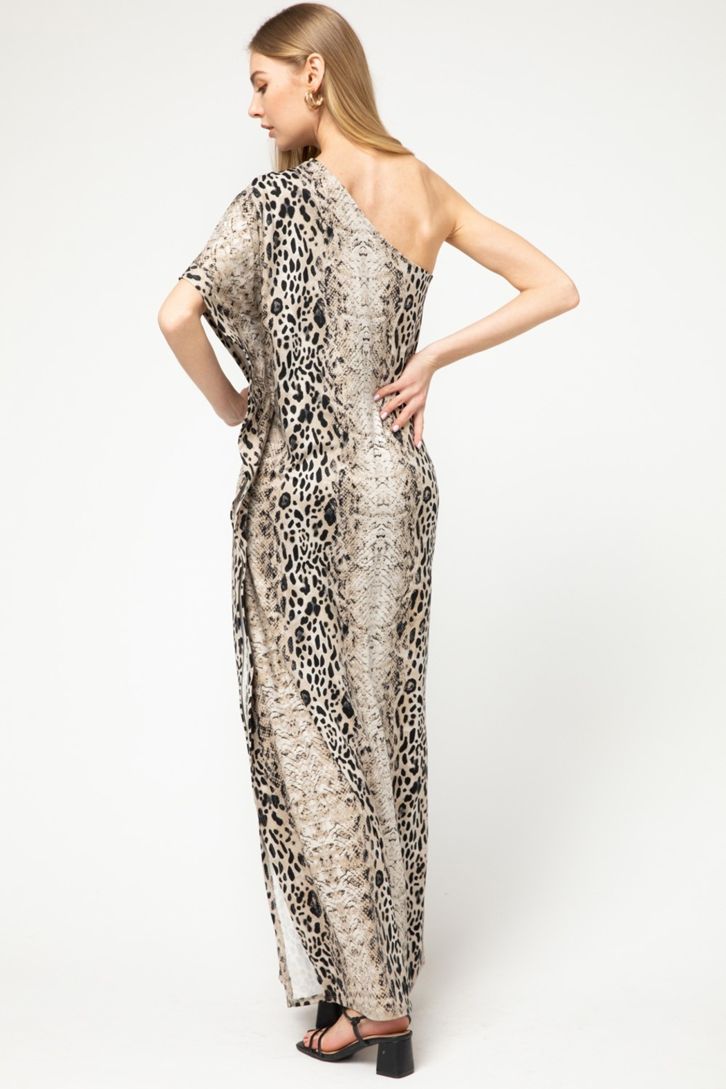 entro  Snake and Leopard Print Maxi Dress - Front Full Image
