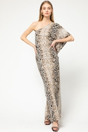 entro  Snake and Leopard Print Maxi Dress - Front cropped