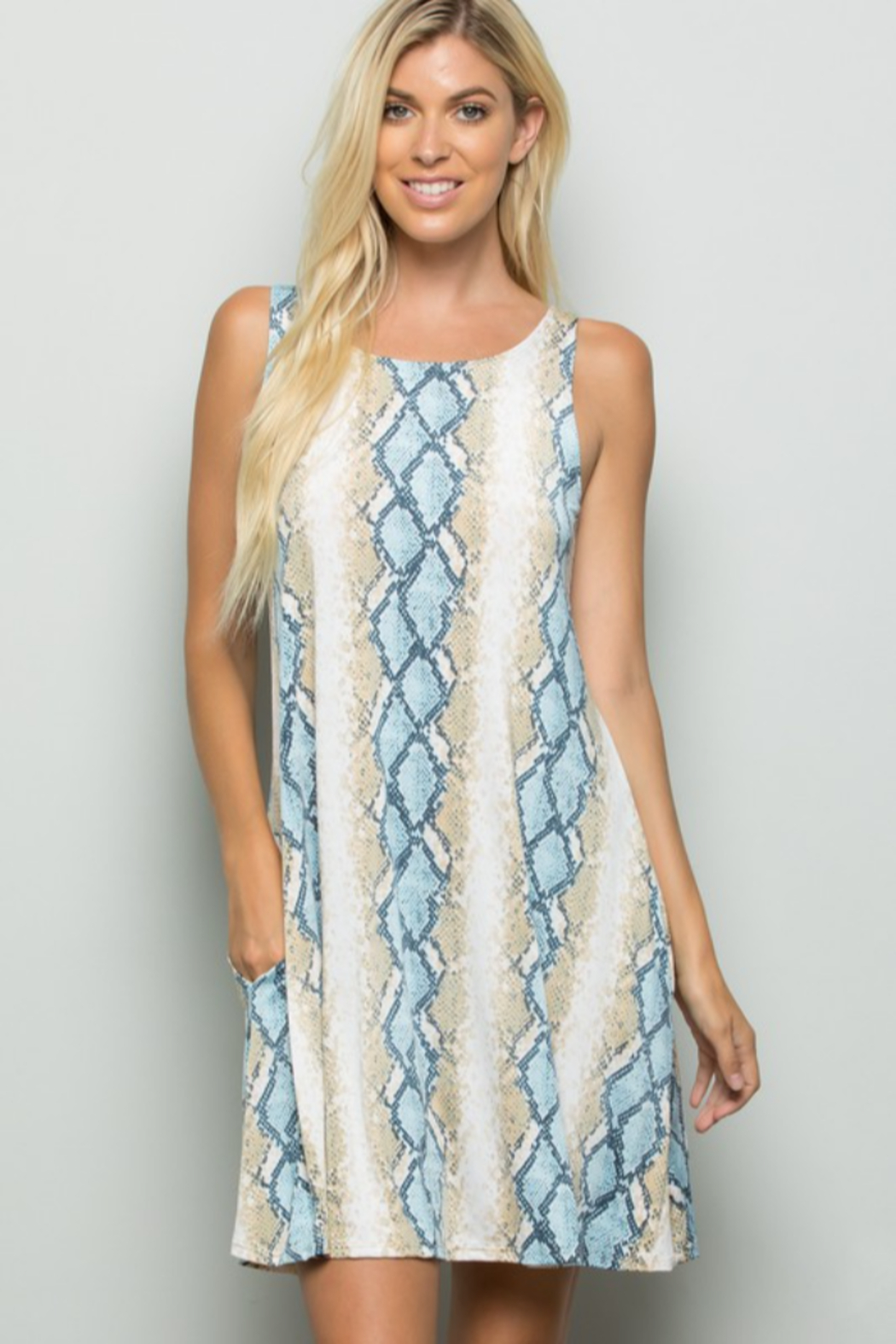 Heimish Snake Print Dress With Side Pockets - Front Cropped Image