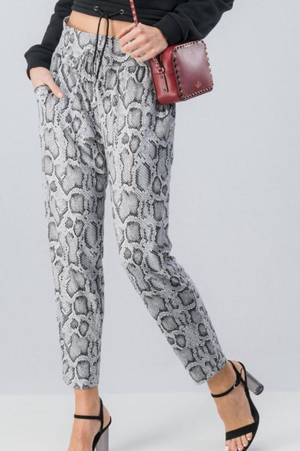 Trend:notes Snake Print Jogger - Front Full Image