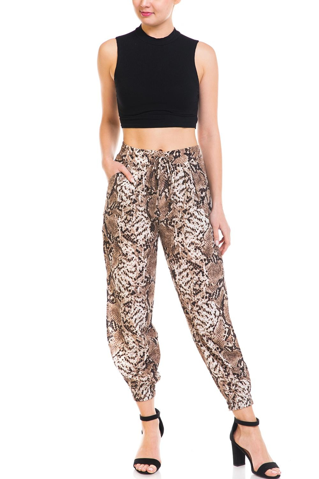 dress forum Snake Print Joggers - Front Full Image