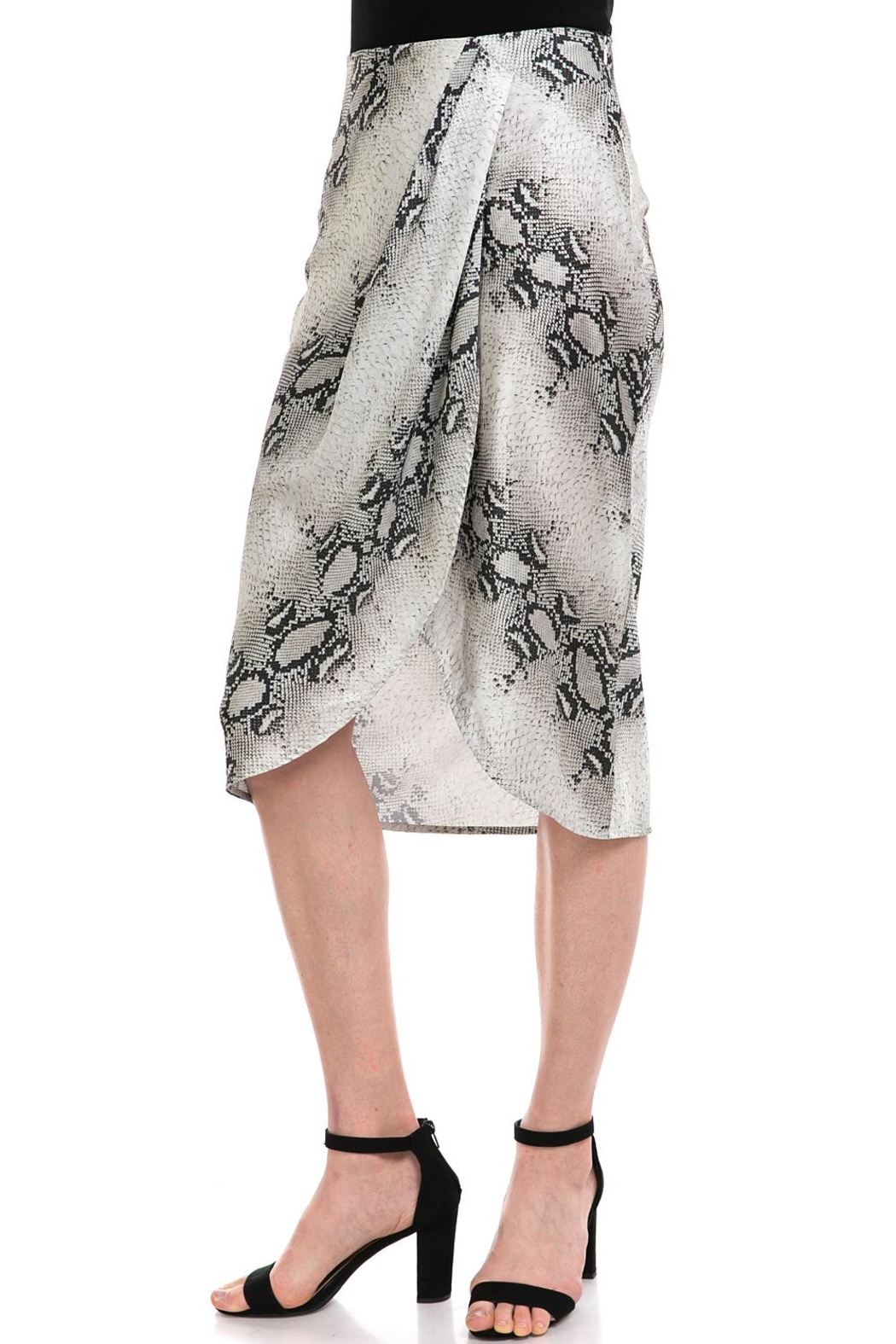 dress forum Snake-Print Overwrap Skirt - Front Full Image