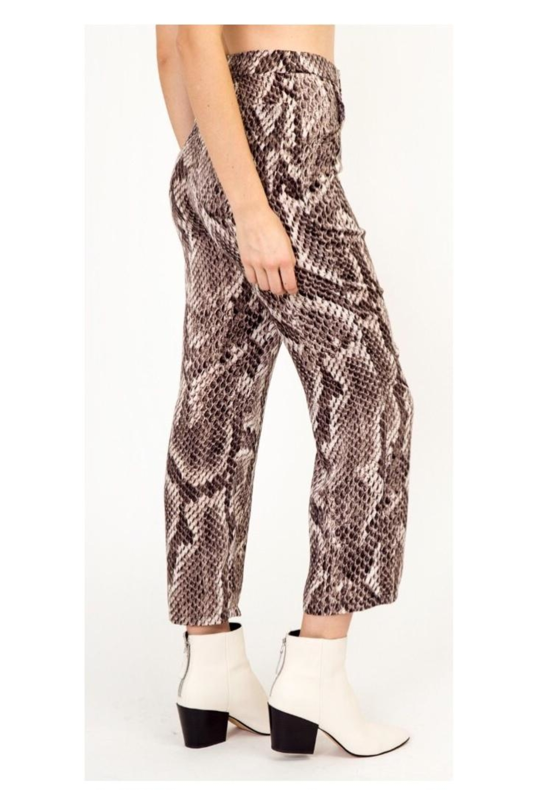 Polly & Esther Snake Print Pants - Front Full Image