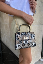 Handbag Express Snake Print Satchel Bag - Front full body
