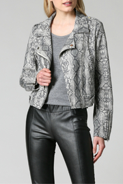 FATE by LFD Snake print suede moto jacket - Product Mini Image