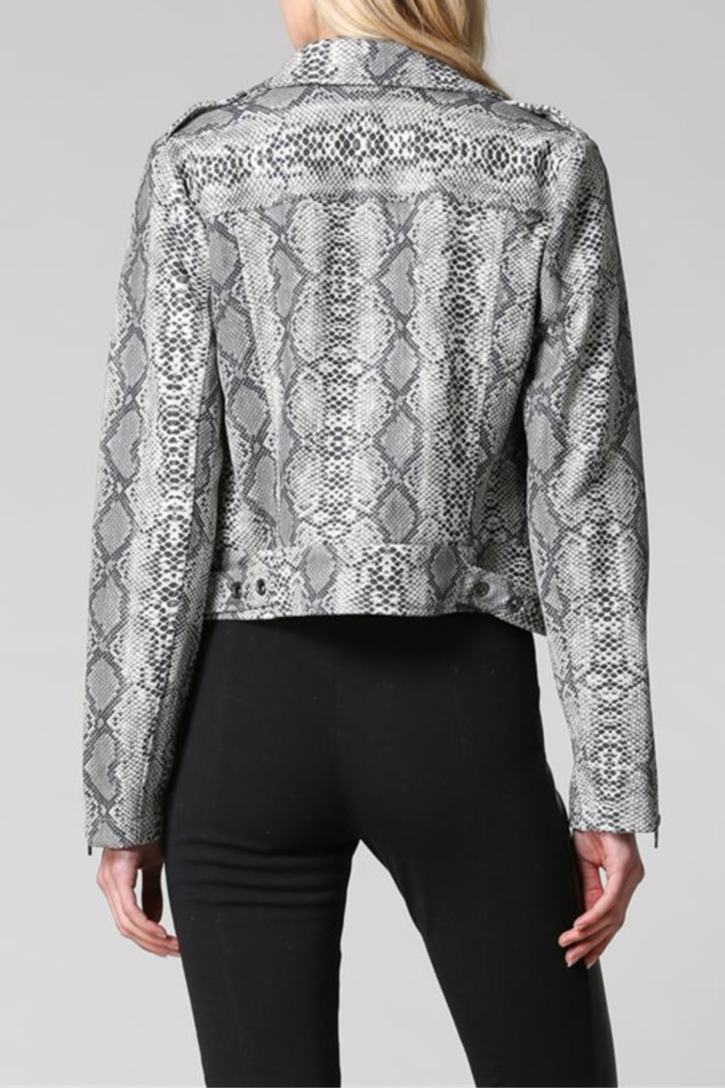 FATE by LFD Snake Print Sueded Moto Jacket - Front Full Image