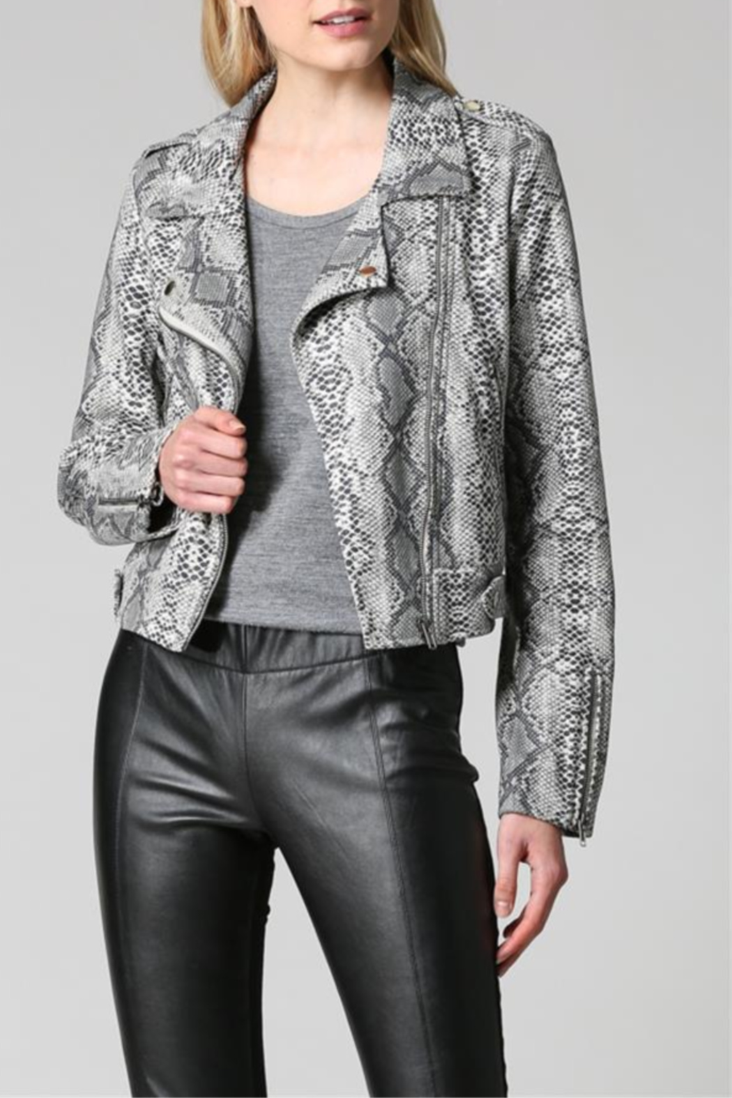 FATE by LFD Snake Print Sueded Moto Jacket - Front Cropped Image