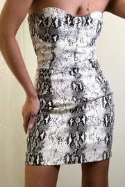 TIMELESS Snakesin Sweetheart Dress - Front cropped