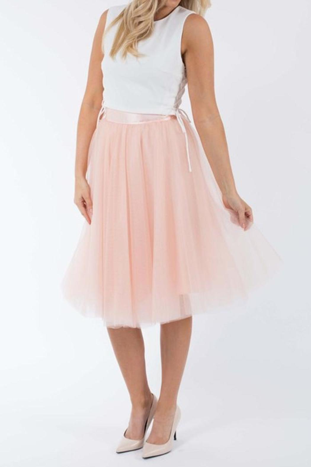 SNAZZY CHIC BOUTIQUE Blush Tulle Skirt - Main Image