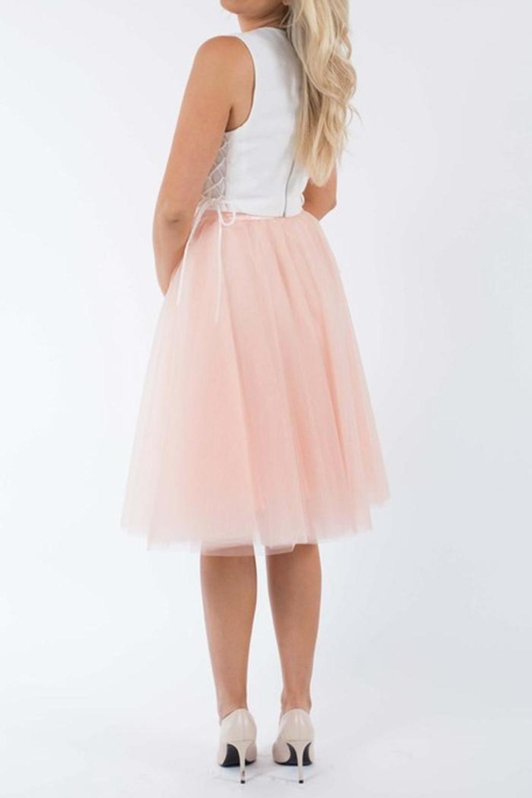 SNAZZY CHIC BOUTIQUE Blush Tulle Skirt - Front Full Image